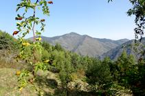 Pico de Urdossa.