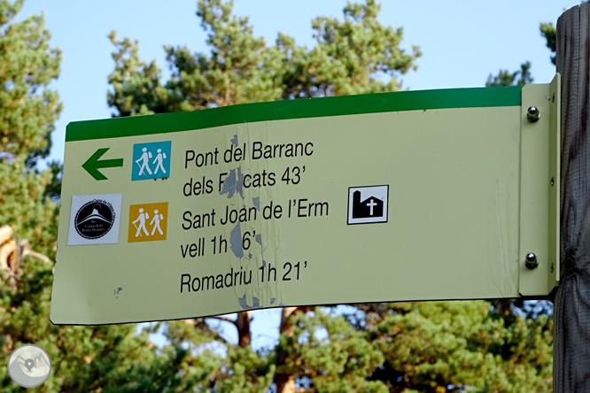 Por los bosques de Sant Joan de l