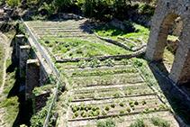 Huerta del monasterio, hoy en día cuidado por el personal del restaurante.