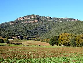 Por antiguos caminos de monjes en Sant Juli� del Mont