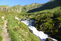 Rododendros y salto de agua del río de los Meners en el valle de Ransol.