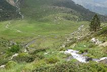 Bonito plano verde donde el agua hace varios meandros.