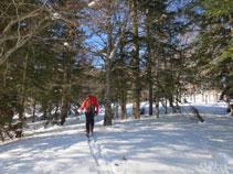 Subiendo por el lado de las pistas de esquí, por entre el bosque.