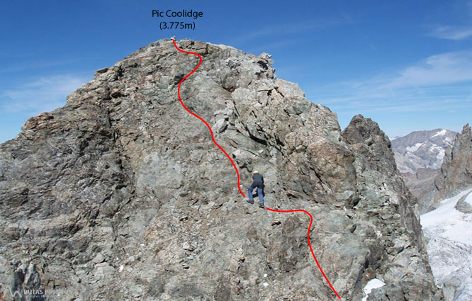 Pico Coolidge (3.775m) 2