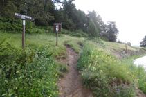 Camino al pico de Casamanya.