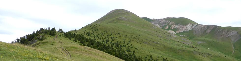 Picos de Casamanya desde el collado de Ordino
