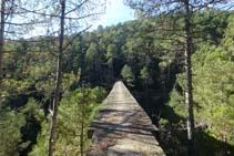 El Puente de la Frau visto desde la orilla derecha orográfica de la Rasa de Cirera.