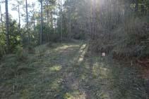 El sendero desemboca en un camino llano.