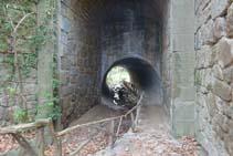 El túnel metálico bajo la C-26 es el inicio del itinerario botánico y un punto de paso obligado.