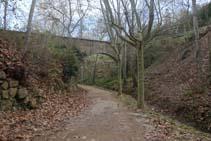 Iniciamos el bonito recorrido por el barranco de Pallarès.