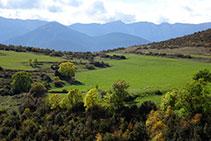 Campos de la casa de Orèn y al fondo la cara norte del Cadí.