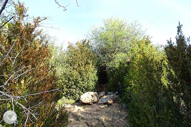 La cueva de Anes desde Prullans 1