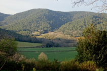 El encinar en el valle de Llémena.