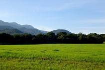 Campos de cereales y las montañas de Rocacorba.