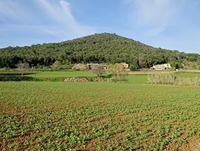 El volc�n del Puig d�Adri