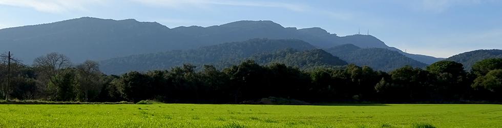 El volcán del Puig d�Adri