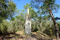El Puig Cargol.