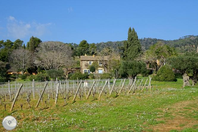 Puig Cargol y la llanura de Calonge 1