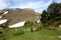 Poco a poco perdemos altura y nos acercamos al fondo del valle.