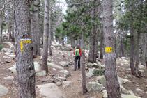 Seguimos la señalización de la red de senderos de la Cerdaña.