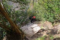 En otros tramos de la canal los bojes que hay a ambos lados son los que nos ayudan a subir.