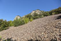 Tarteres en el Solà de Andorra.