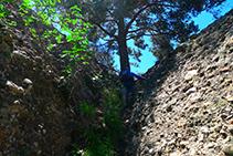 Canaleta que nos lleva hasta el collado que hay entre la Agulla del Corb y la Roca del Corb.