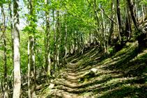 Castañeda camino a Les Illes.