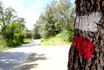 GR 11 camino de las Mines.