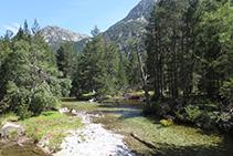 Aigüestortes: el río de Sant Nicolau avanza pausadamente entre prados y bosques.