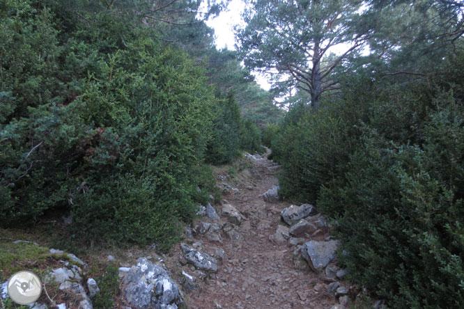 Ruta de las ermitas de Tella 1