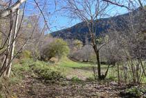 Llegamos al fondo del valle y nos encontramos el desvío de la fuente de Canemassos.