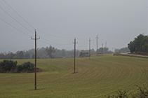 Campos de cereales en el camino de Sant Tirs.