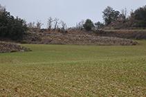 Bancales y muros de piedra seca.