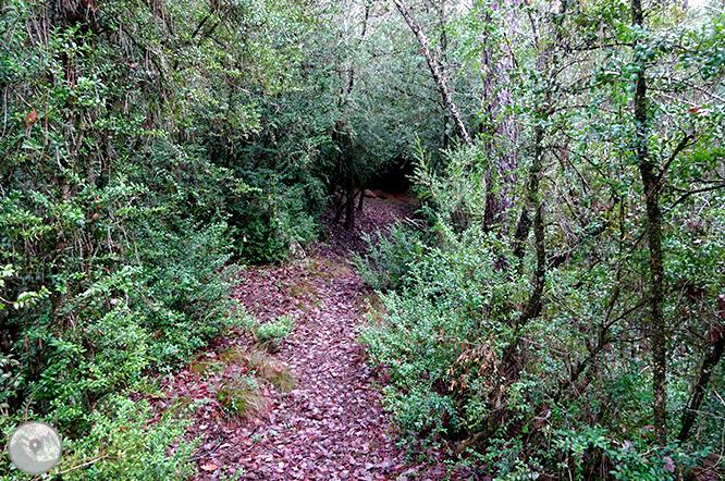 Ruta de las Mentiras en Pinell de Solsonès 1