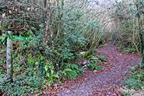 Palo indicativo en el arroyo de Becdejuvell.