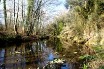 El río Brugent junto al puente de Santa Brígida.