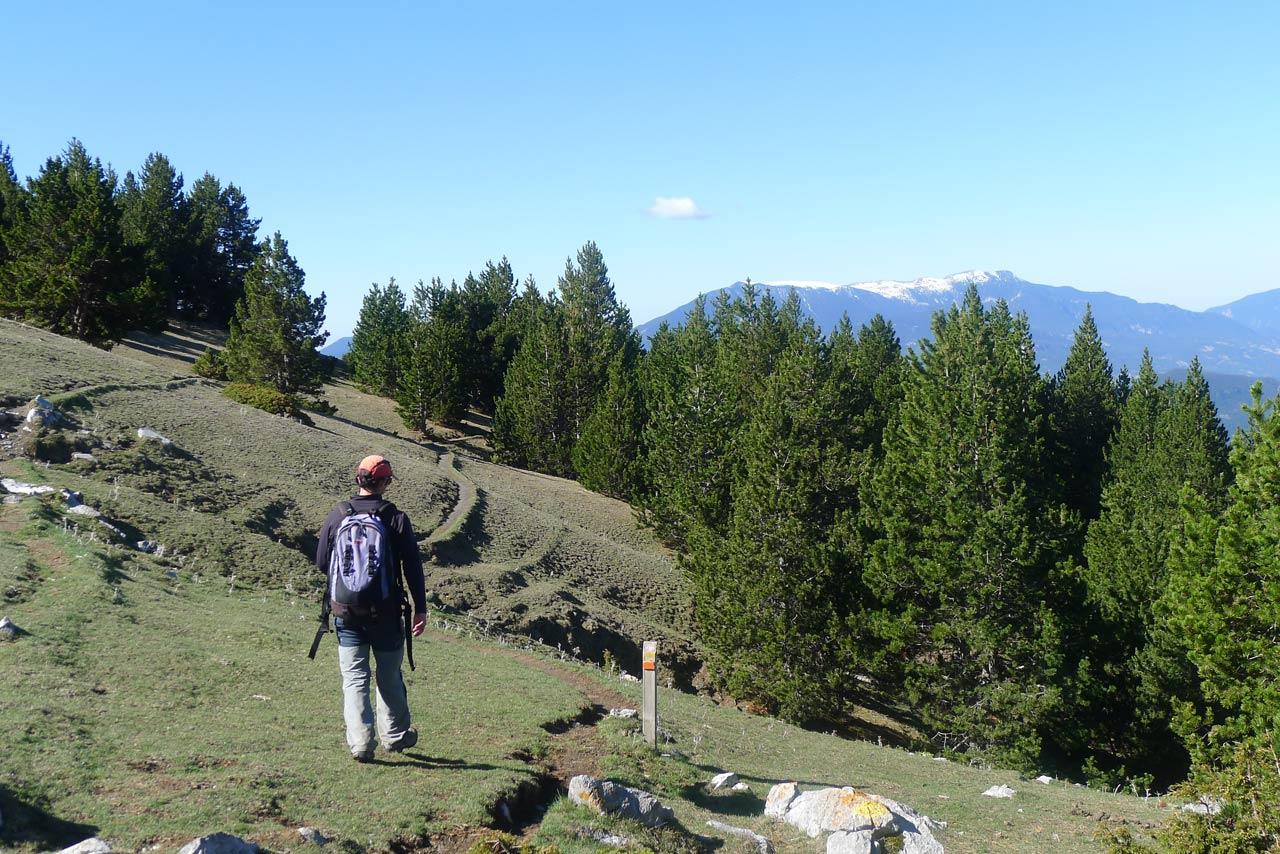 Fotograf as ruta del trencapinyes y mirador de els orris for Mirador del pirineo
