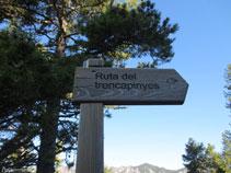 Señal indicadora de la Ruta del Trencapinyes.