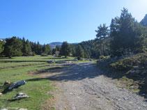 Llegamos al área de pícnic de Els Orris.