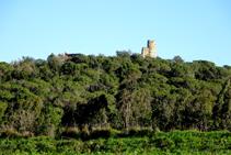 Restos del castillo de Sant Iscle.
