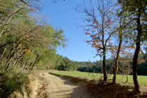 Campos de conreo cerca de Can Morell.