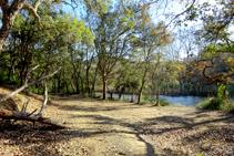 En la ribera del pantano de Llobet.