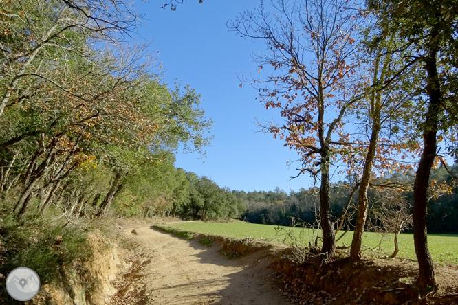 Ruta de los pantanos de Llobet en Vidreres 1