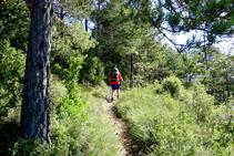 Siguiendo el GR 241, el sendero de Borredà.