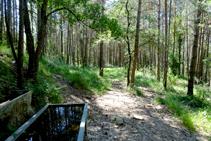 Bosques y abrevadero en la solana de Bertrana.