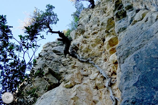 Por los alrededores de Vilada en el Berguedá 1