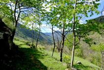 Camino de Aurós.