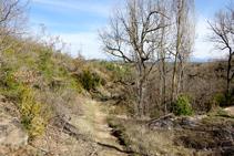 El camino, al lado de la fuente del Bisbe.