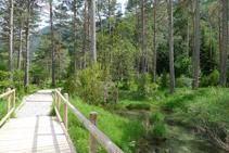Cruzamos un puente de madera.